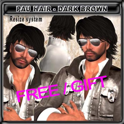 FREE EdelStore man hair _ Pau _ dark brown