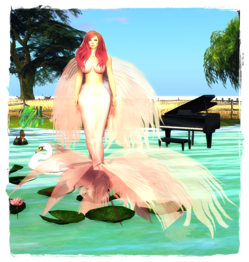 clubMermaid - FREEBIE6