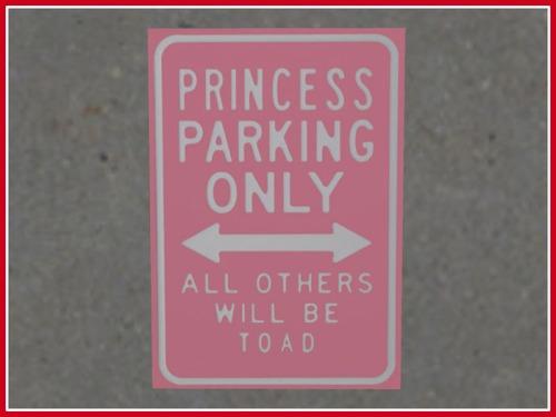 princess_parking_sign_ad_pic1