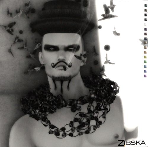 Zibska3
