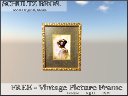 Free_Vintage_Picture_Frame