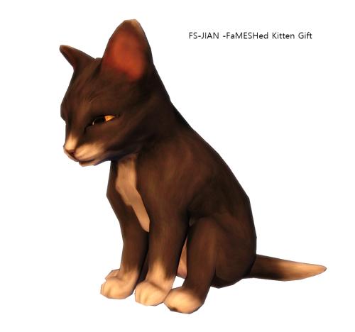 FS-JIAN -FaMESHed Kitten Gift