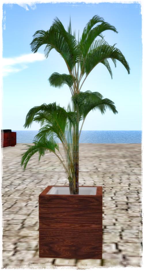 PrimPossible - 1 Prim Potted Plant 2016 - 1 Linden