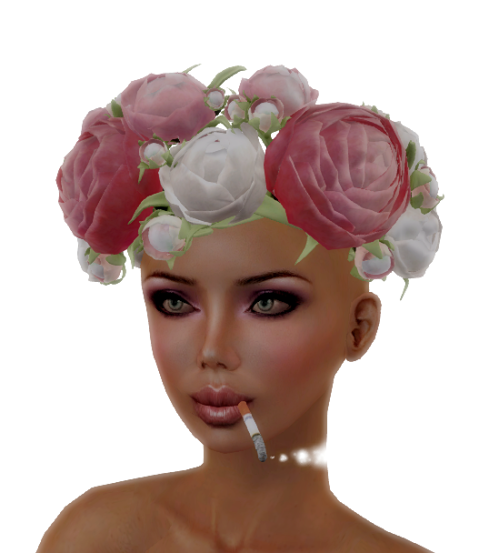 .aisling. Spring Roses Crown