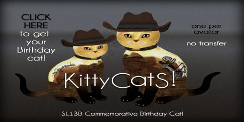 KittyCatS! SL13B Shared Adventure Ad