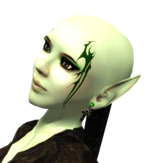 VC_-_Green_Forest_Elf_-_Fullavatar_-_complete_Avatar1