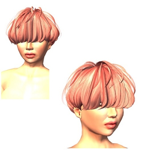 cheveux-gift