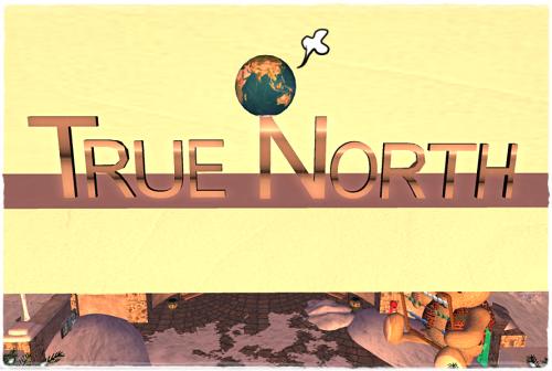 poe-9-globe-038-true-north-designs